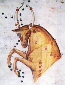 Toro Stellare